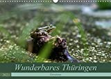 Wunderbares Thüringen - Gewässer (Wandkalender 2021 DIN A3 quer)