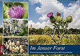 Im Jenaer Forst (Wandkalender 2021 DIN A3 quer)