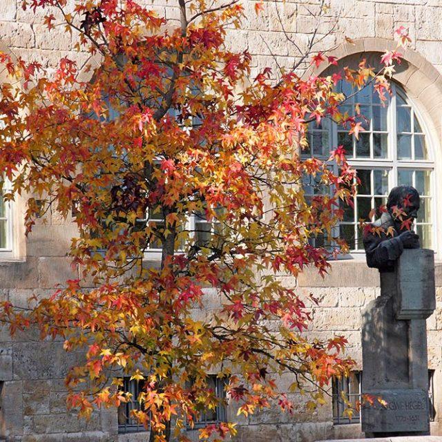 Herbst am Unigebäude