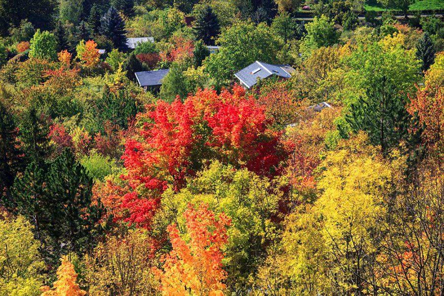 Herbstblick vom Hausberg
