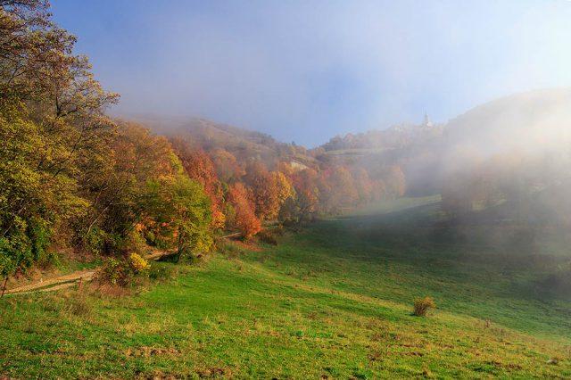 Nebel an der Leuchtenburg