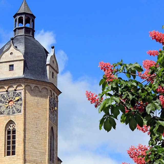 Die Stadtkirche Jena