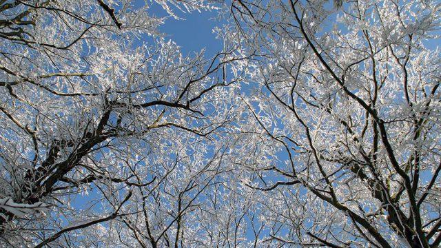 Himmlischer Winter