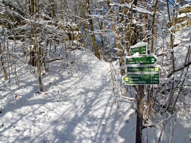 Winterliche Fuchsturmwanderung